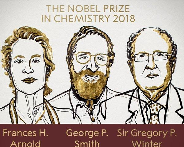 Il Nobel per la Chimica 2018 ai chimici statunitensi Frances Arnold e George Smith e al chimico inglese Sir Gregory Winter