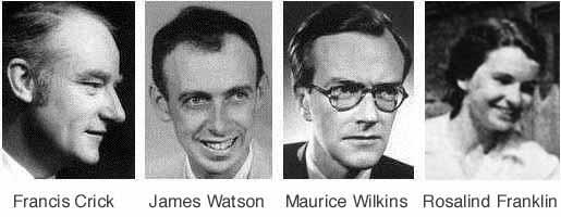 """James Dewey Watson  e le conseguenze della sua dichiarazione """"I neri sono meno intelligenti dei bianchi"""""""
