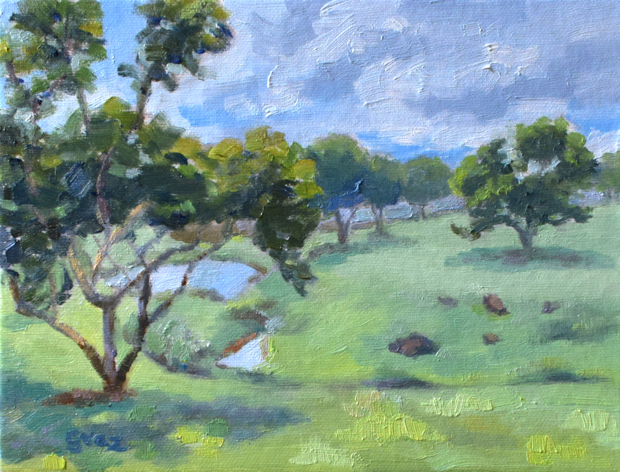Verão no cerrado, oil on canvas, 15 x 20 cm, 2020
