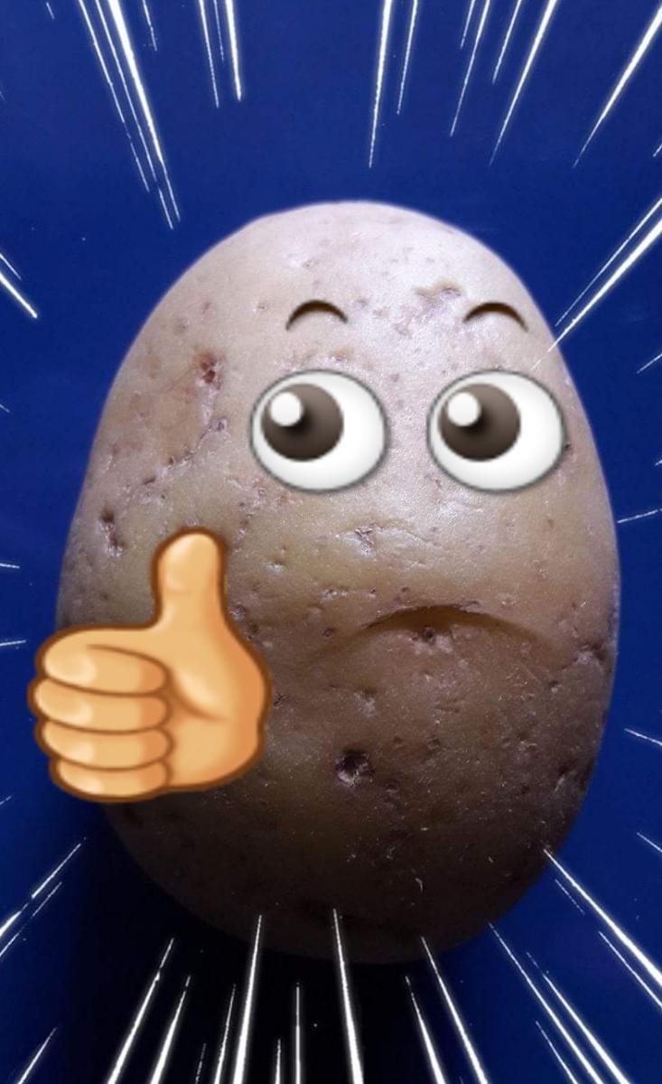 World Record  Gnocco più lungo del Mondo longest potato dumpling