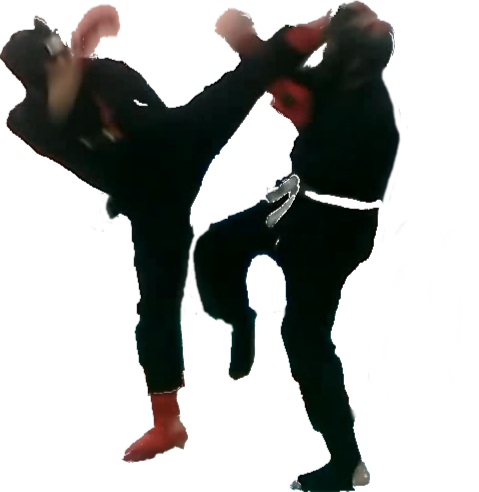 Kung Fu Lam Pak Foligno